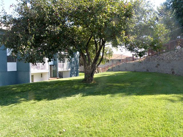 Rent in Kamloops – Kelson Manor Apartments. Yard