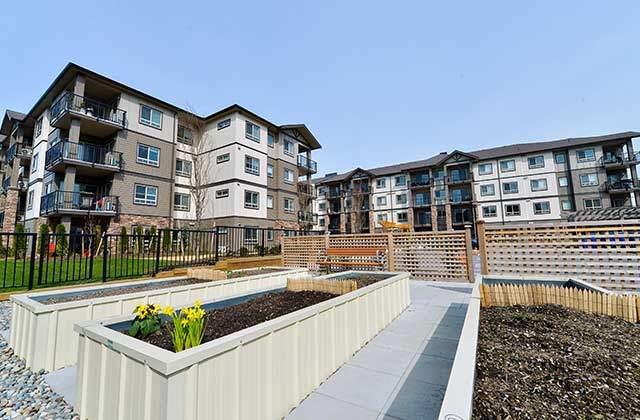 Lexington Court Apartments gardens