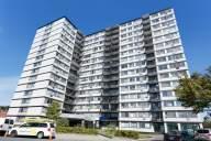 Maison Hamilton Apartment for Rent Côte-Saint-Luc thumbnail