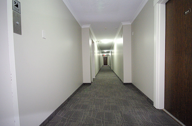 Viscount Villa Apartments. hall