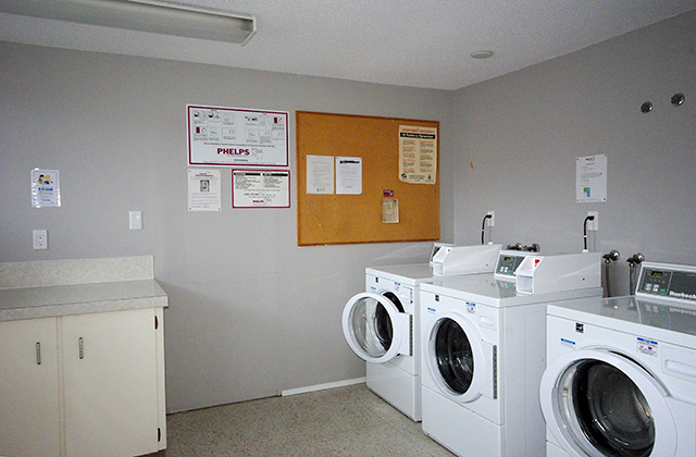 Viscount Villa Apartments. laundry