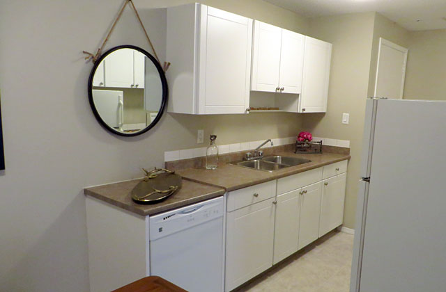 Hillsview Apartments. kitchen3