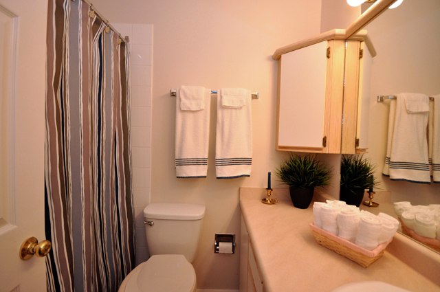 Buckland Manor Apartment. Bathroom1