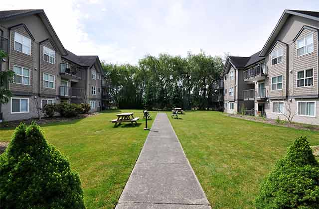 Delair Court Apartments. grounds2
