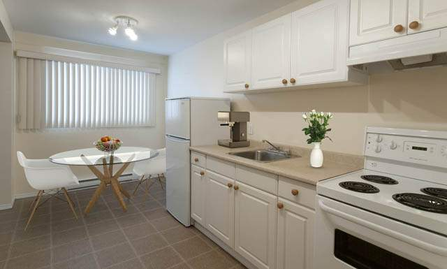 Paradise Park Apartments white kitchen