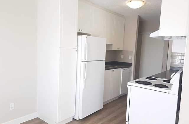 Sunrnita House Leduc kitchen