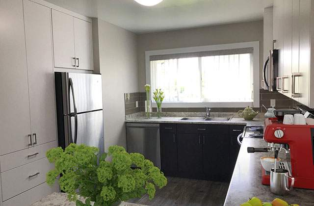 Edgewater Terrace Townhouses kitchen 2